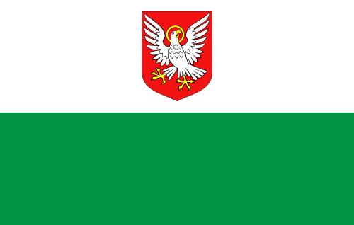 Флаг уезда ляэнемаа