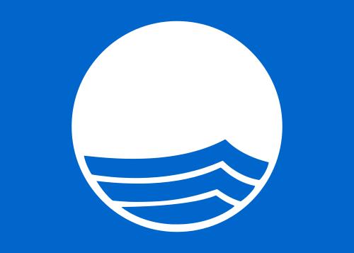 Как создать флаг организации